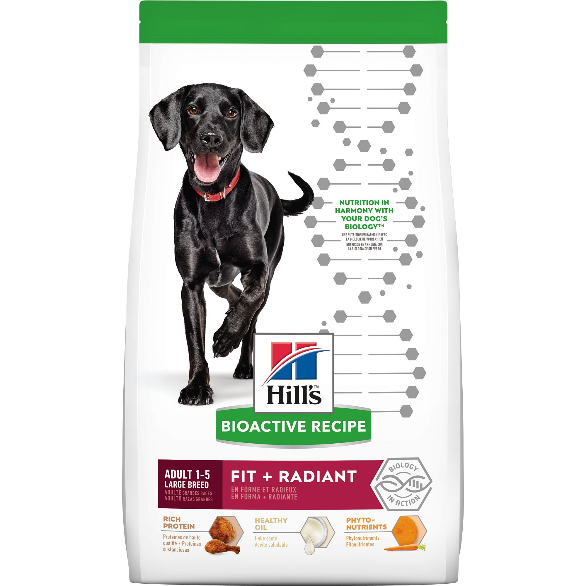 Hill's Bioactive Recipe Fit + Radiant Chicken & Barley Adult Large Breed Dry Dog Food, 22.5 lbs.